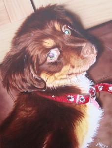 Airbrushed Fine Art Pet Portrait Painting